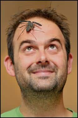 Jonathan with a whip tailed spider on his head