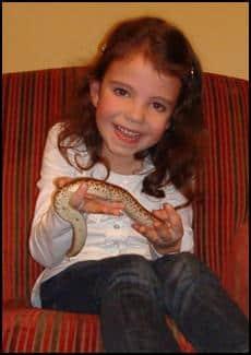 Child handling a snake