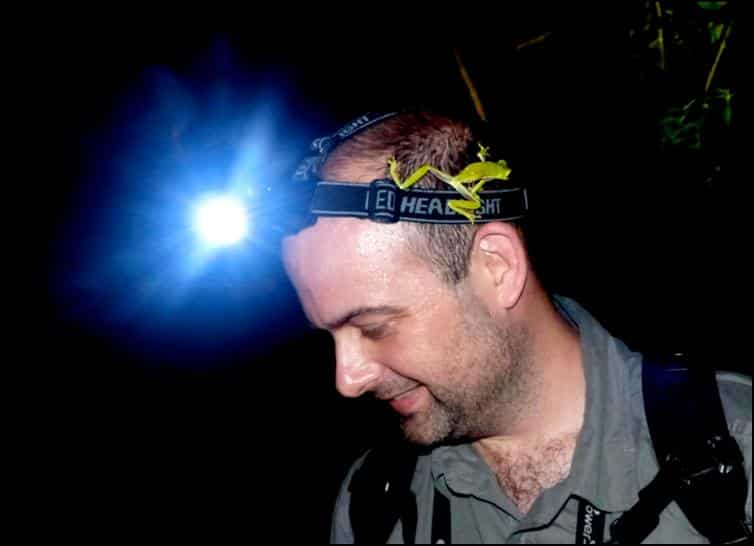 Leaf frog on Jonathan's head