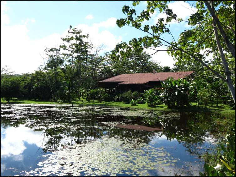 Lagoon-side restaurant at Maquenque Eco-Lodge