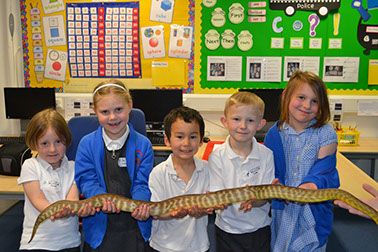 Group of school children holding a Woma
