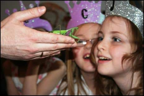 Children looking at a Praying Mantis at a party